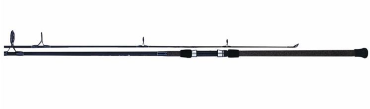 Best Long Distance Surf Casting Rods - Pro Fishing Rigs
